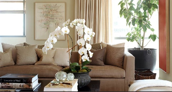 The. furniture arrangement   Feng Shui that Makes Sense by Cathleen